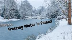 First Snow Of 2021 Wroclaw Poland Part 1 | Frozen Pond | Snow Covered Trees | Freezing Winter