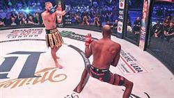 Top 10 Rarest Knockouts In MMA
